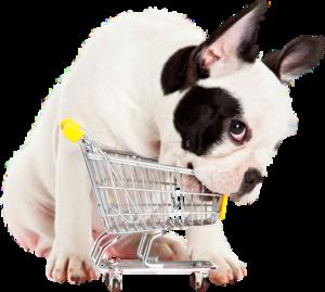 Магазин товаров для животных