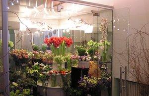 Холодильные витрины в Вологде