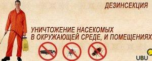 Услуги дезинсекции в Нижневартовске! Работа на все 100%!!!