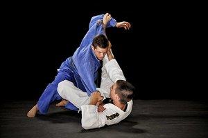 Тренировки по джиу джитсу в Вологде