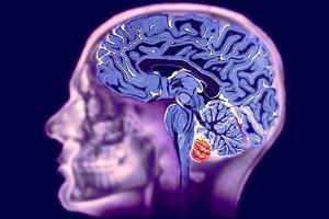МРТ головного мозга и вен головного мозга в Орске