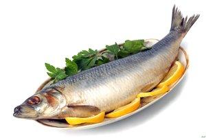Собственное производство и продажа соленой, копченной и вяленой рыбы. Самые низкие цены на копченую рыбу.