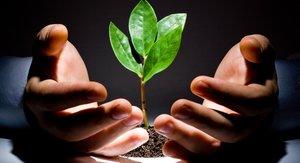 Поддержка малого и среднего предпринимательства в Вологде