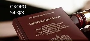 Услуги по подготовке к 54-ФЗ.