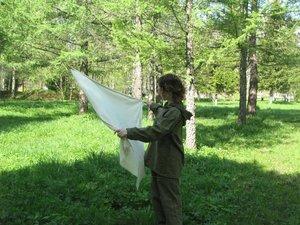 Обработка участка от клещей в Вологде и Вологодском районе. Как обнаружить клеща на участке?