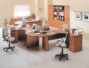 Мебель Дин-Р совсем не дорога и относится к офисной мебели эконом класса, но, вместе с тем, благодаря эффектному внешнему виду, ее можно использовать и в кабинетах руководителей!