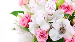 Заказать цветы на дом