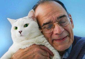 Операции кошке в Туле - быстро, легко, безболезненно!