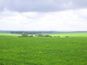 Земельный участок ИЖС, 12 соток