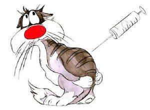 Вакцинация животных в Туле