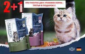 НОВОЕ ПОСТУПЛЕНИЕ: корма Бош Санабель для кошек