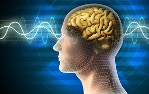 Сделать ЭЭГ головного мозга в Вологде