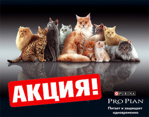 АКЦИИ PRO PLAN для кошек!!!