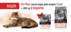Акция на сухие корма для кошек Pro Plan