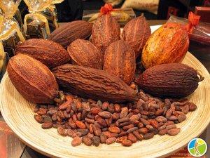 В продаже появились сырые какао-бобы!