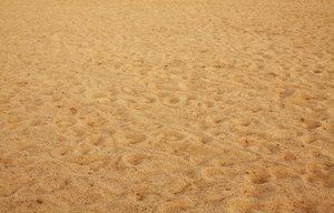 Продажа песка оптом. Только выгодные условия!