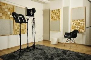 Проектирование Акустики включено при заказе комплекта акустического оформления от нашей студии
