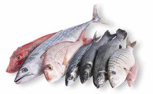 Продажа свежемороженой рыбы в Орске в розницу