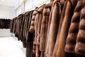 Права потребителей при приобретении некачественных меховых изделий