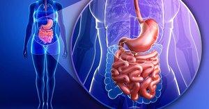 Энтерография кишечника