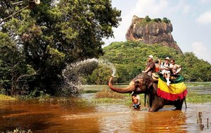 Новый Год на Шри-Ланке!