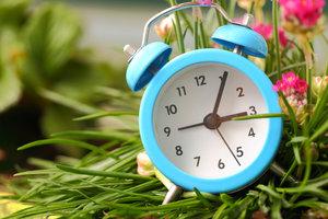 Купить часы будильник по низкой цене