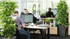 Измерение уровня освещенности на рабочих местах