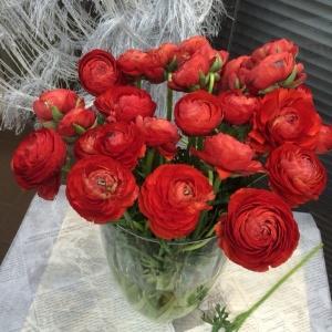 Цветы для праздника, счастья и любви!