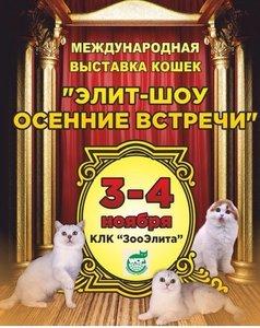 """3 и 4 ноября у нас будет БЛАГОТВОРИТЕЛЬНАЯ ЯРМАРКА на Международной выставке кошек КЛК """"Зооэлита"""""""