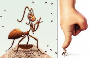 Методы борьбы с муравьями
