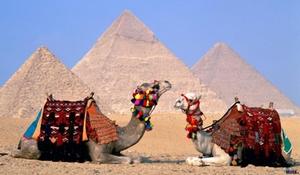 ЕгиПеТ из Сургута по СУПЕР ЦЕНАМ !!!