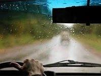 Вождение в условиях тумана или дождя