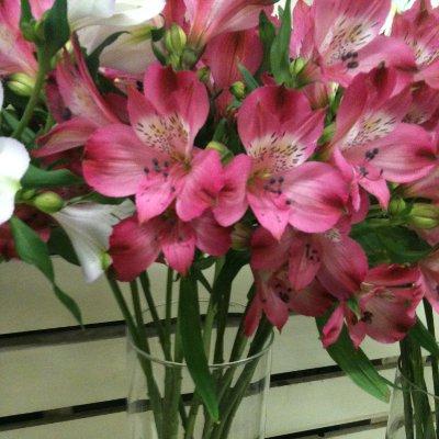 Цветы доставка ханты мансийск