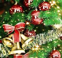 Закажи поздравление снегурочки и получи новогоднюю елку в подарок!