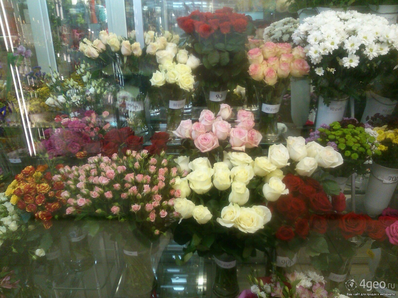 Оптом цветы в вологде