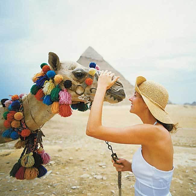 египет из кемерово