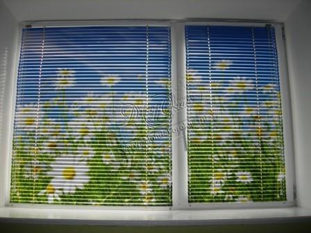 жалюзи и рулонные шторы с фотопечатью