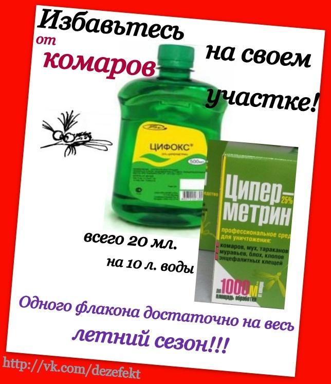 средства уничтожения паразитов в организме человека