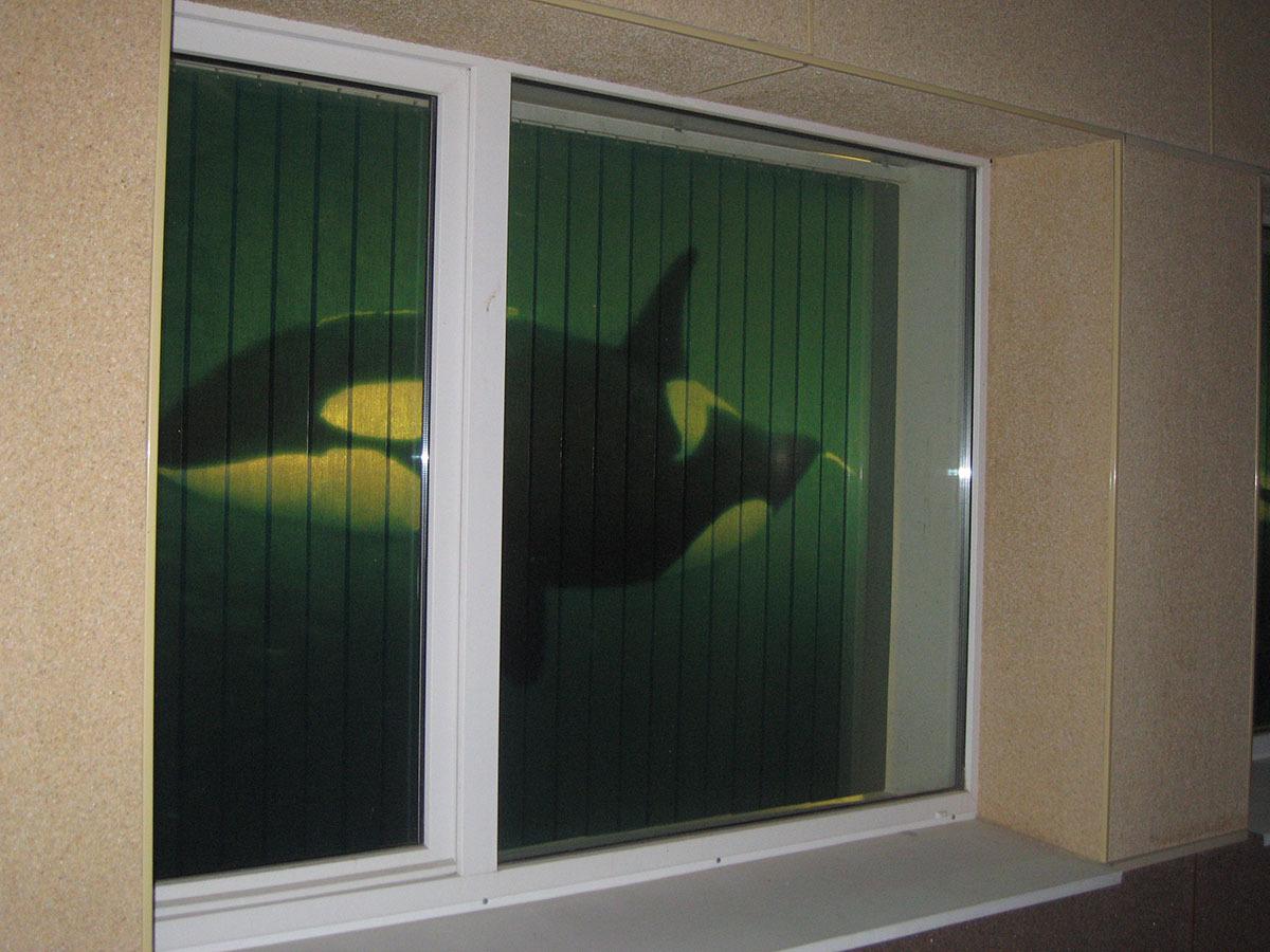 Межкомнатные окна фото