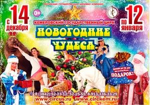 """""""Новогодние Чудеса"""" в Кемеровском цирке"""