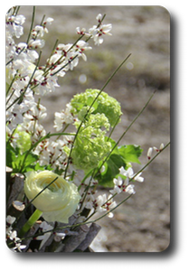 Скоро Пасха - весенние букеты!