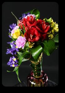 Скоро 23 февраля. Какие цветы подарить мужчине?