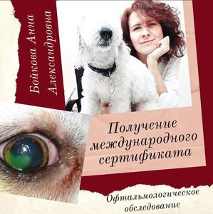 Консультация офтальмолога для животных в Оренбурге