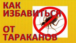 Уничтожение тараканов в квартире в Вологде