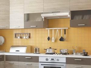 Встраиваемые и классические вытяжки для кухни в Вологде