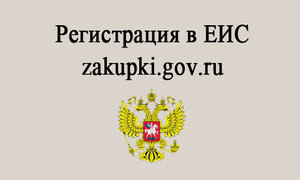 Регистрация в Единой Информационной Системе. Регистрация в ЕИС
