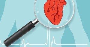 Что показывает УЗИ сердца?