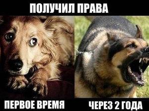 """Цены в """"Автошколе"""" г. Красноярск"""