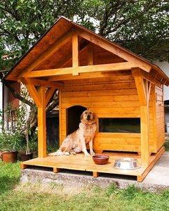 Будка для собаки - постройте дом своему питомцу!