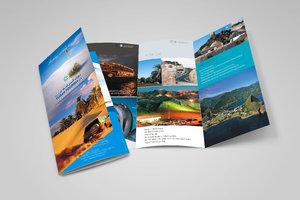 Разработка и печать рекламных буклетов в Вологде